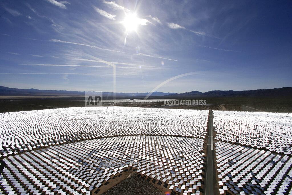 Solar Desert Bloom