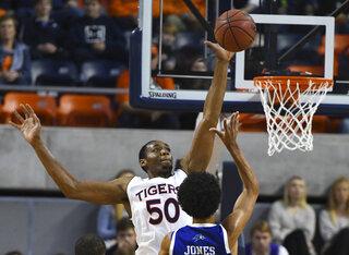 UNC Asheville Auburn Basketball
