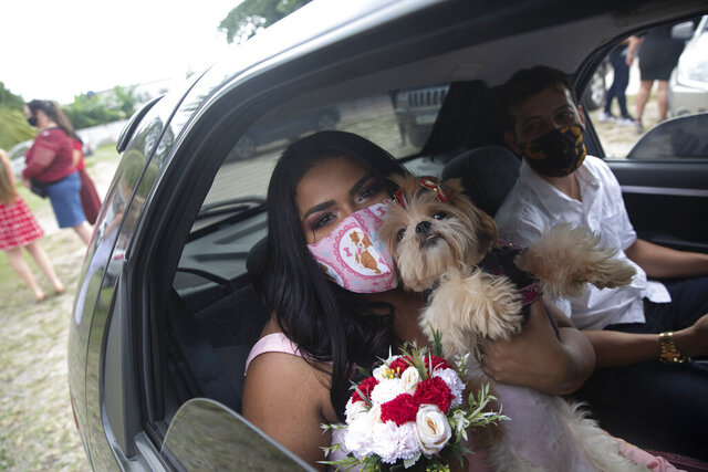 Wearing masks to prevent the spread of the new coronavirus, Erica da Conceicao and Joao Blank ride in the back seat of a car for a drive-thru wedding at the registry office in the neighborhood of Santa Cruz, Rio de Janeiro, Brazil, Thursday, May 28, 2020. A Brazilian notary public hovering outside the car presided over Thursday's ceremony. The drive-thru marriage wasn't the romantic vision the Blanks had imagined, but it is one of few possibilities in the era of COVID-19. (AP Photo/Silvia Izquierdo)