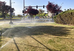 "Sprinklers water grass near a street corner Friday, April 9, 2021, in the Summerlin neighborhood of northwest Las Vegas. A desert city built on a reputation for excess wants to become a model for restraint with a first-in-the-nation policy limiting water use by banning grass that nobody walks on. Las Vegas area water officials are asking the state Legislature to pass a law banning ""non-functional turf."" (AP Photo/Ken Ritter)"