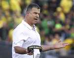 FILE - In this Sept. 22, 2018, file photo, Oregon coach Mario Cristobal gestures toward his team during the second half of an NCAA college football game against Stanford in Eugene, Ore. A victory against Arizona State this weekend in Eugene would assure that Oregon finishes above .500. (AP Photo/Chris Pietsch, file)